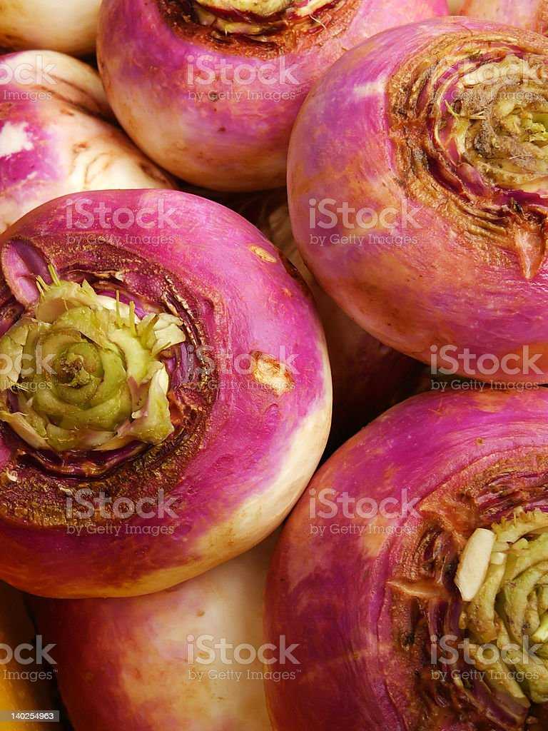 Ripe turnip vegetable close-up 2 royalty-free stock photo