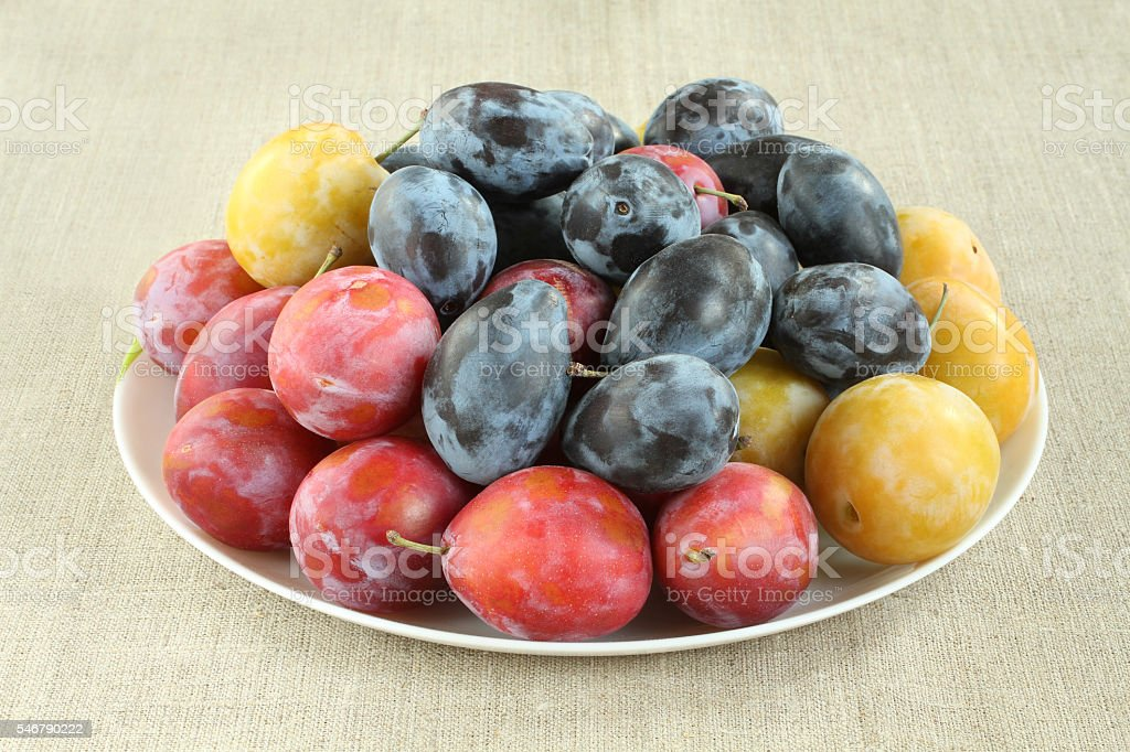 Ripe yellow, blue and pink plums in white plate stock photo
