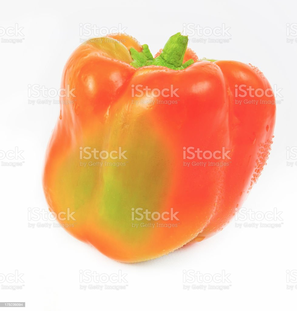 Ripening Bell Pepper royalty-free stock photo