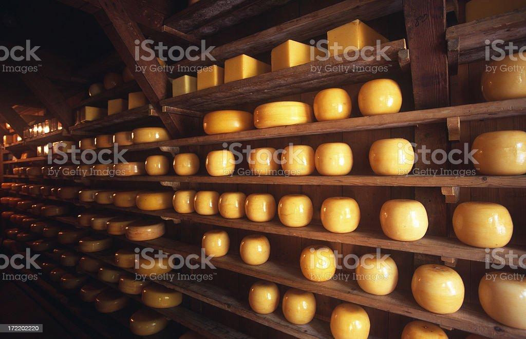 Riping Dutch cheeses royalty-free stock photo