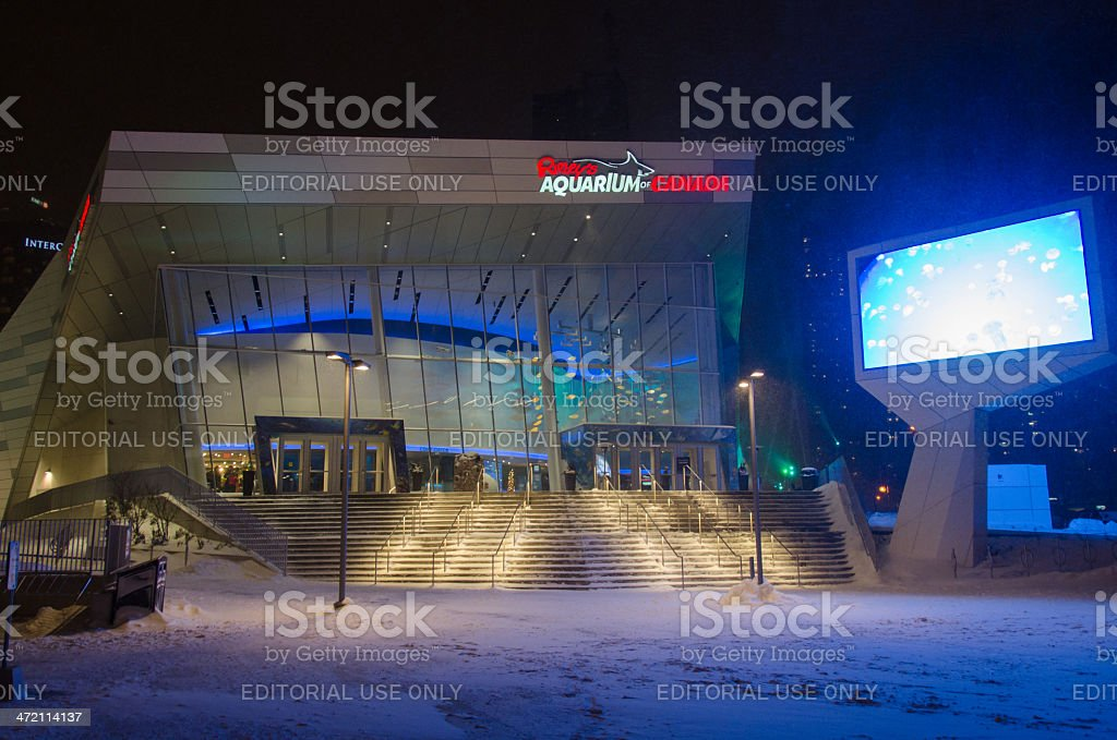 Ripley Aquarium During a Snowfall in Toronto stock photo