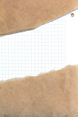 Ripped brown paper background