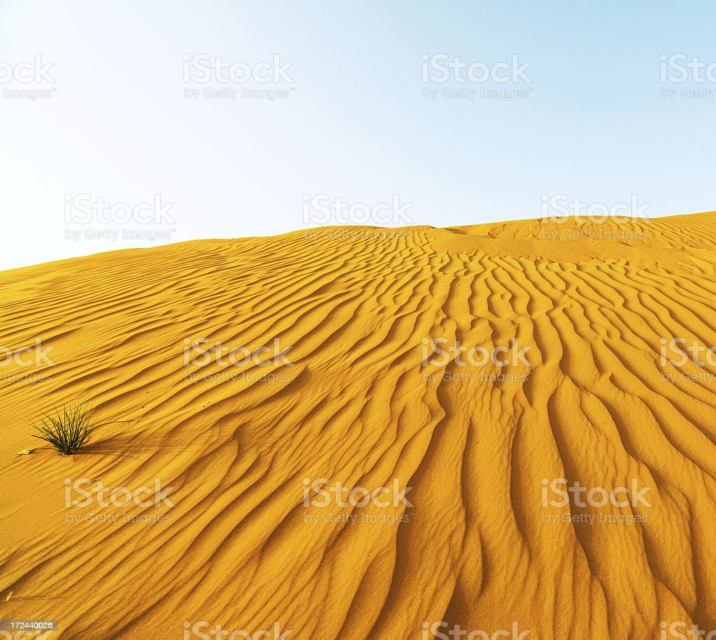 Rippled sand dunes at sunset royalty-free stock photo