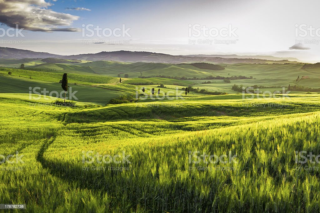 Rising fog in the valley at sunset, Tuscany royalty-free stock photo