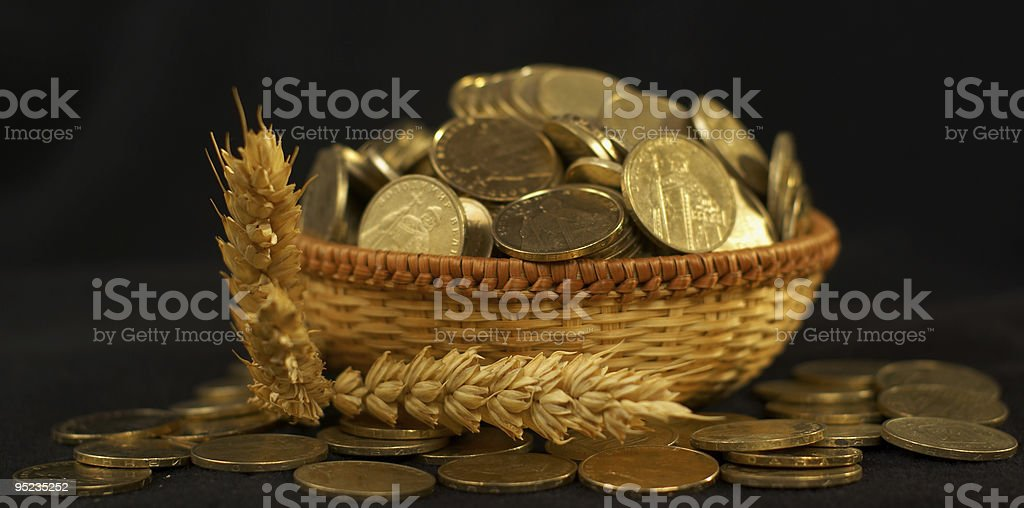 Rising stacks of coins and wheat ears. royalty-free stock photo