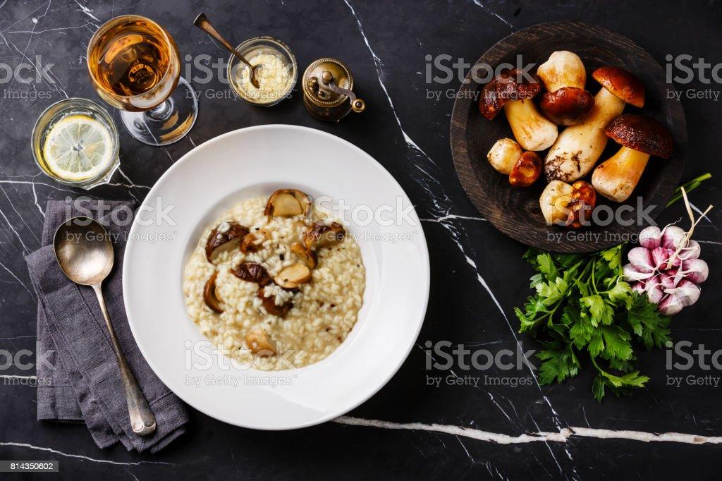 Risotto with porcini mushroom stock photo