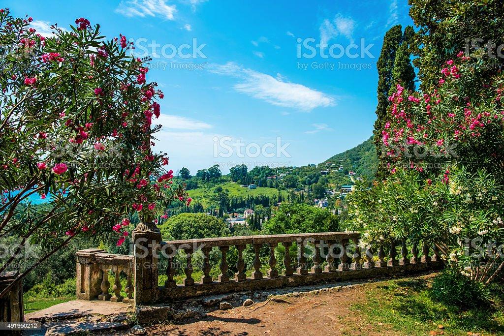 Rits's lake Abkhazia panoramic view stock photo