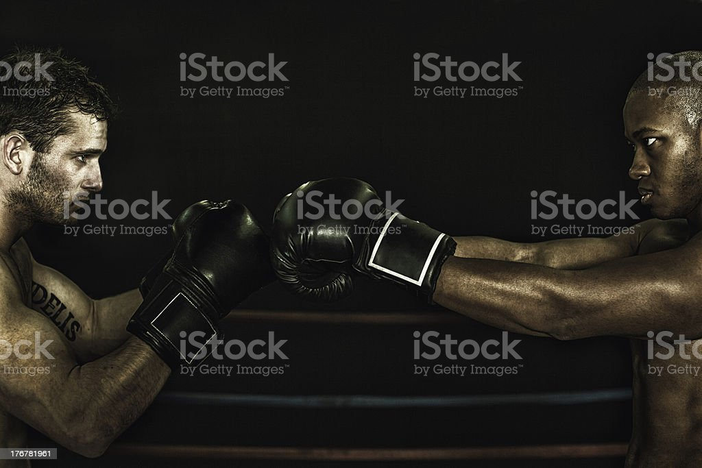 rival boxers faceoff royalty-free stock photo