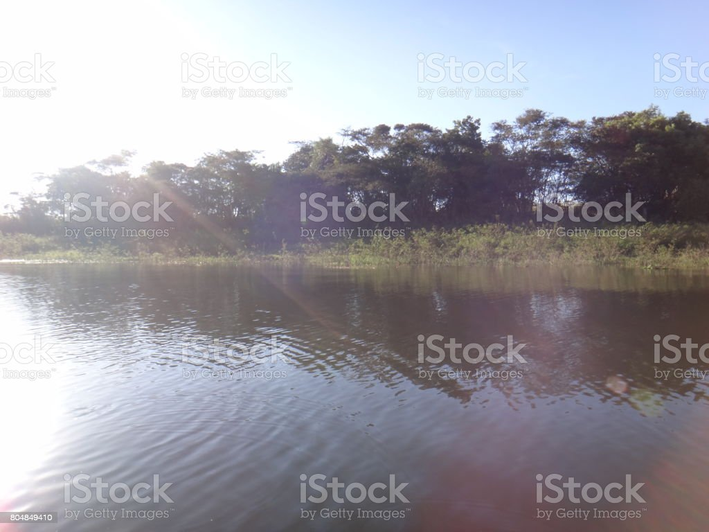 River - A natural freshwater course stock photo