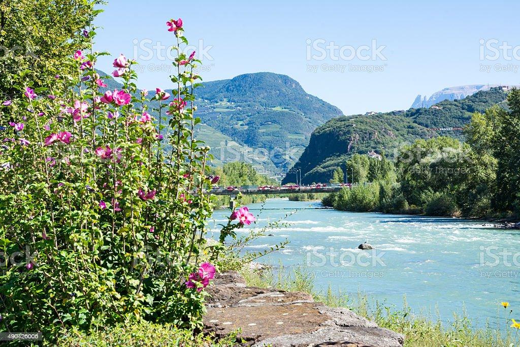 River Adige in Bolzano stock photo