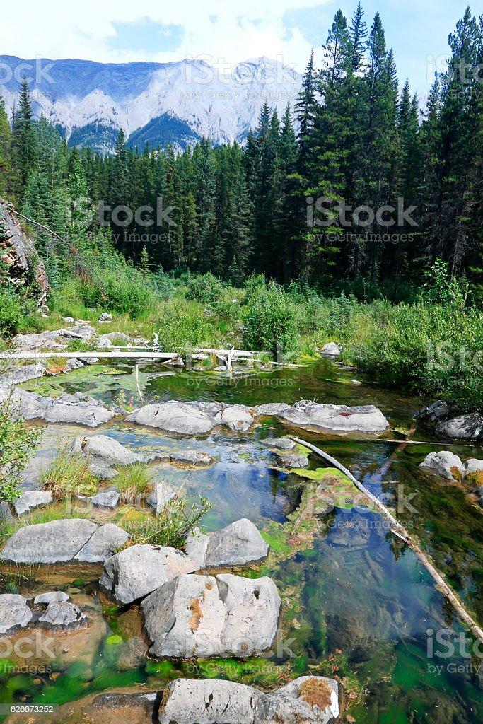 River - Alberta - Canada stock photo