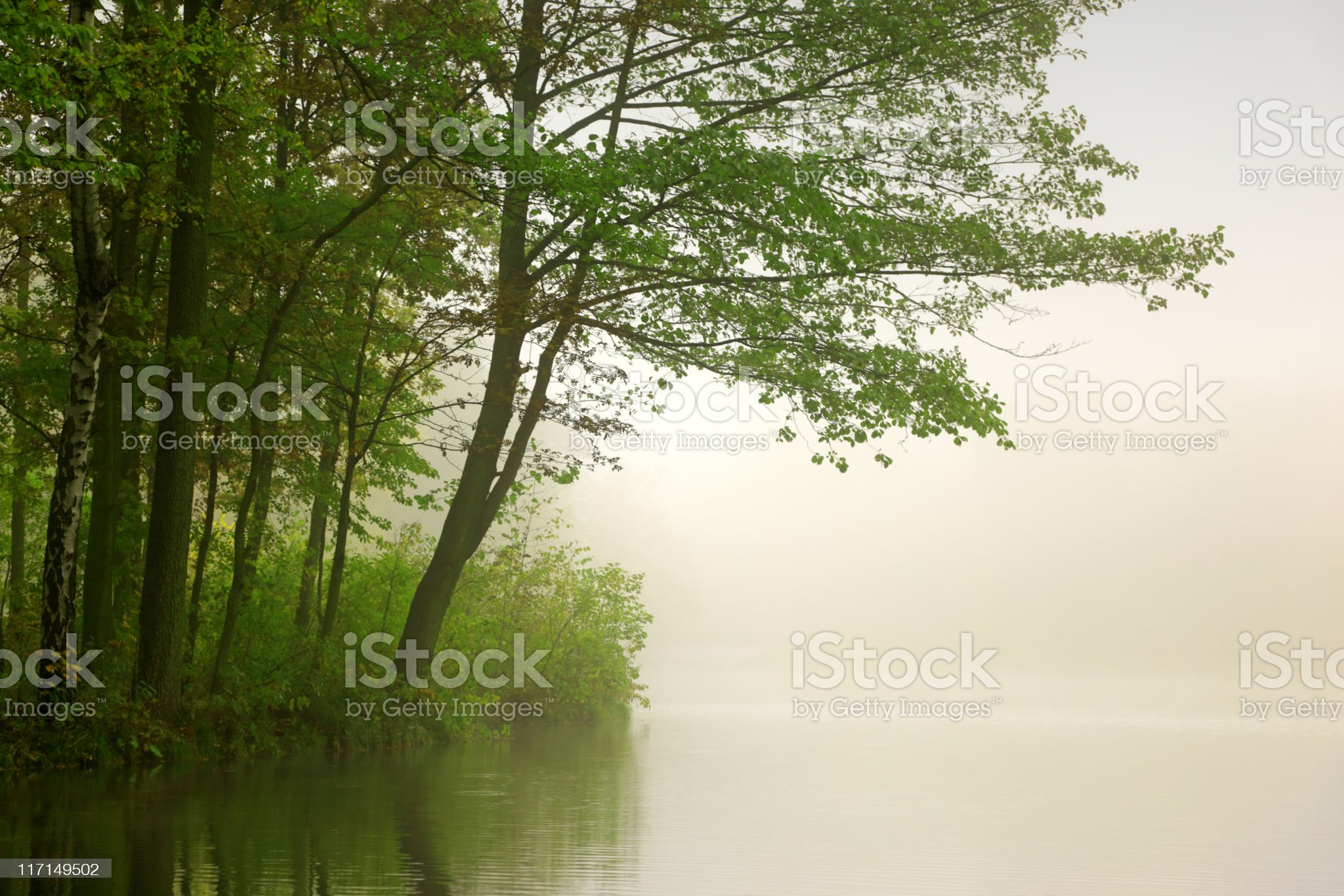 River and Fog royalty-free stock photo