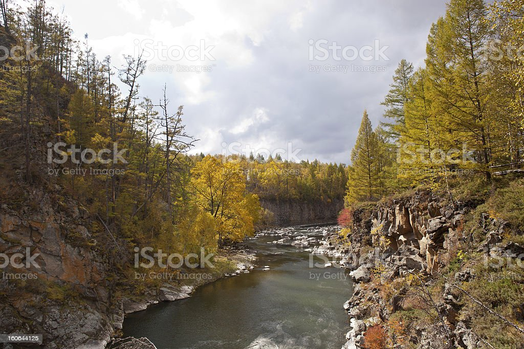 River and Forest in autumn stock photo