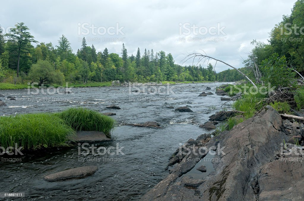 River and Forest in Jay Cooke State Park stock photo
