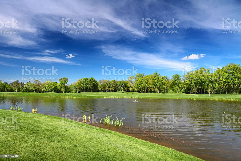 River and green lea in summer day stock photo