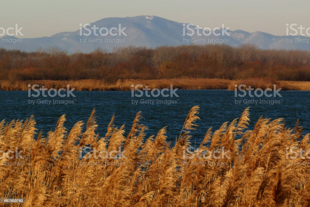 River and hills landscape stock photo