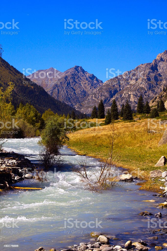 river and nature stock photo