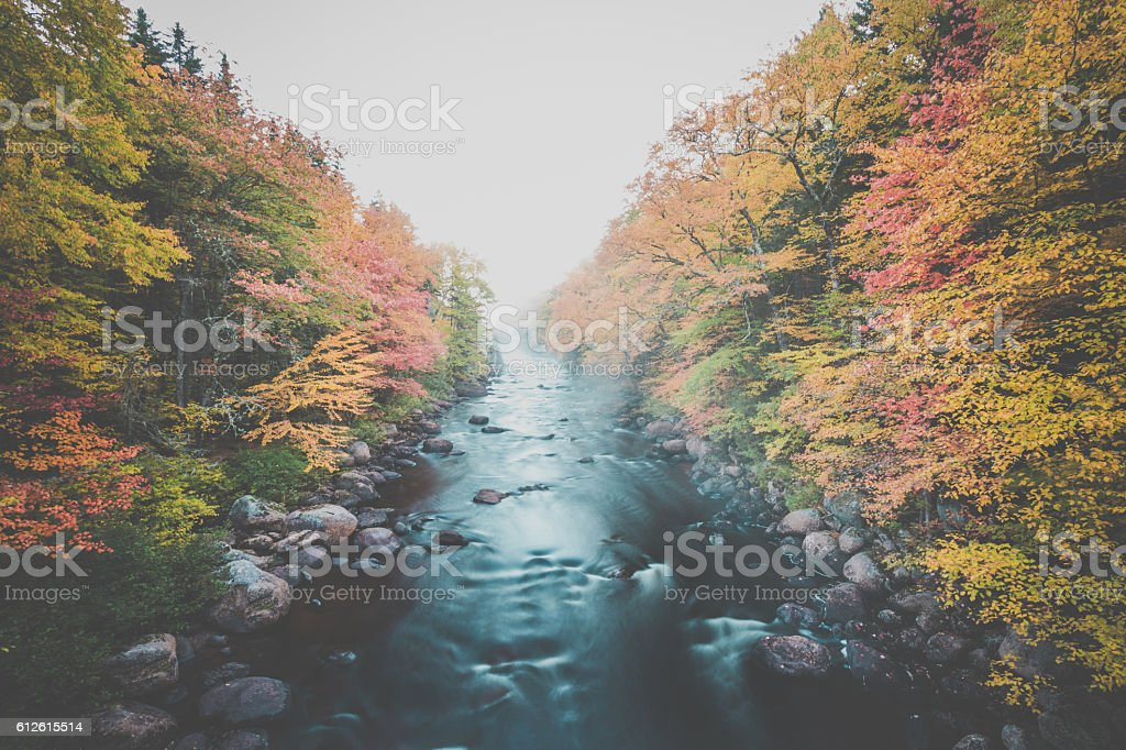 River and Waterfall in Autumn Forest Nature, Quebec, Canada stock photo