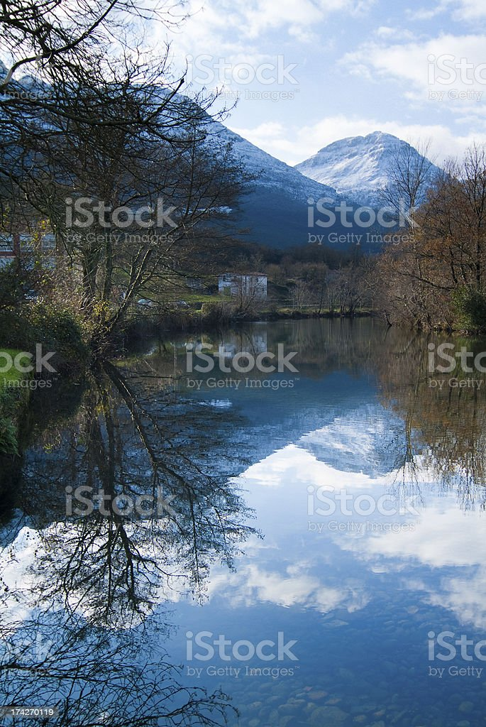 River Ason passing through Branches of the Victory. Cantabria. Spain. royalty-free stock photo