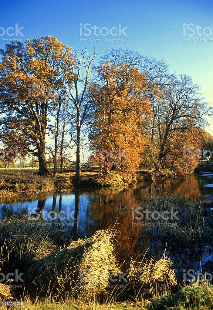 river autumn stock photo