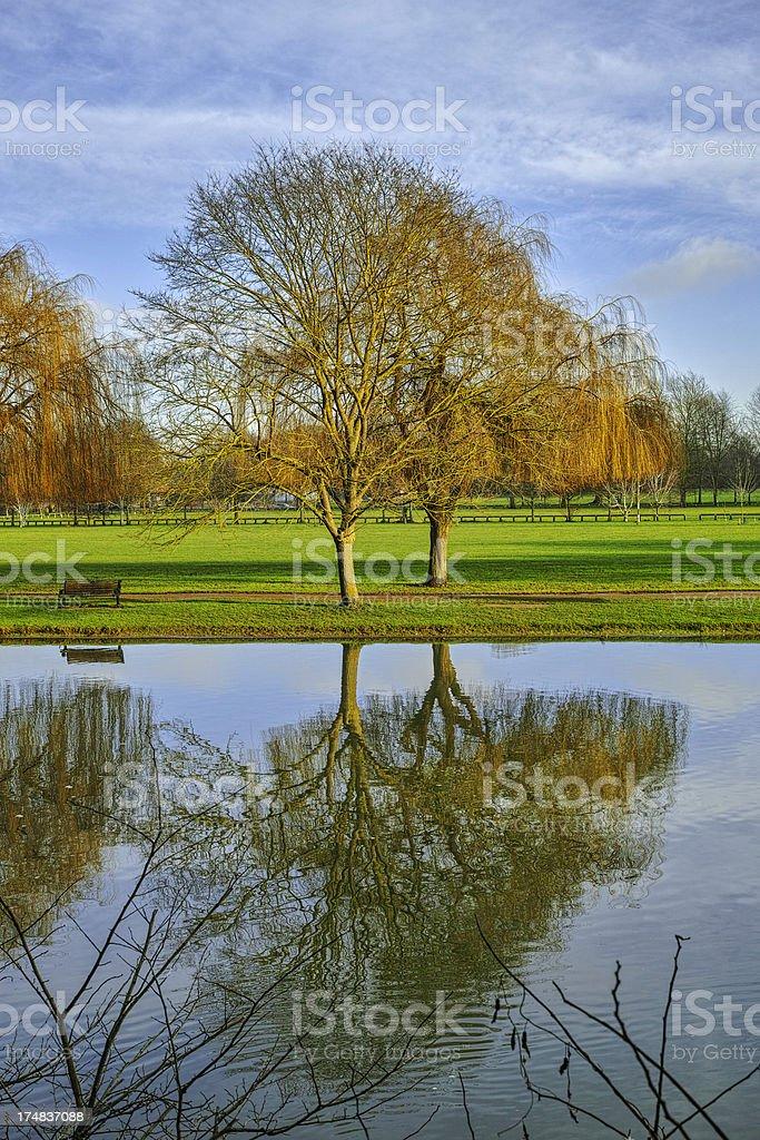 river avon royalty-free stock photo
