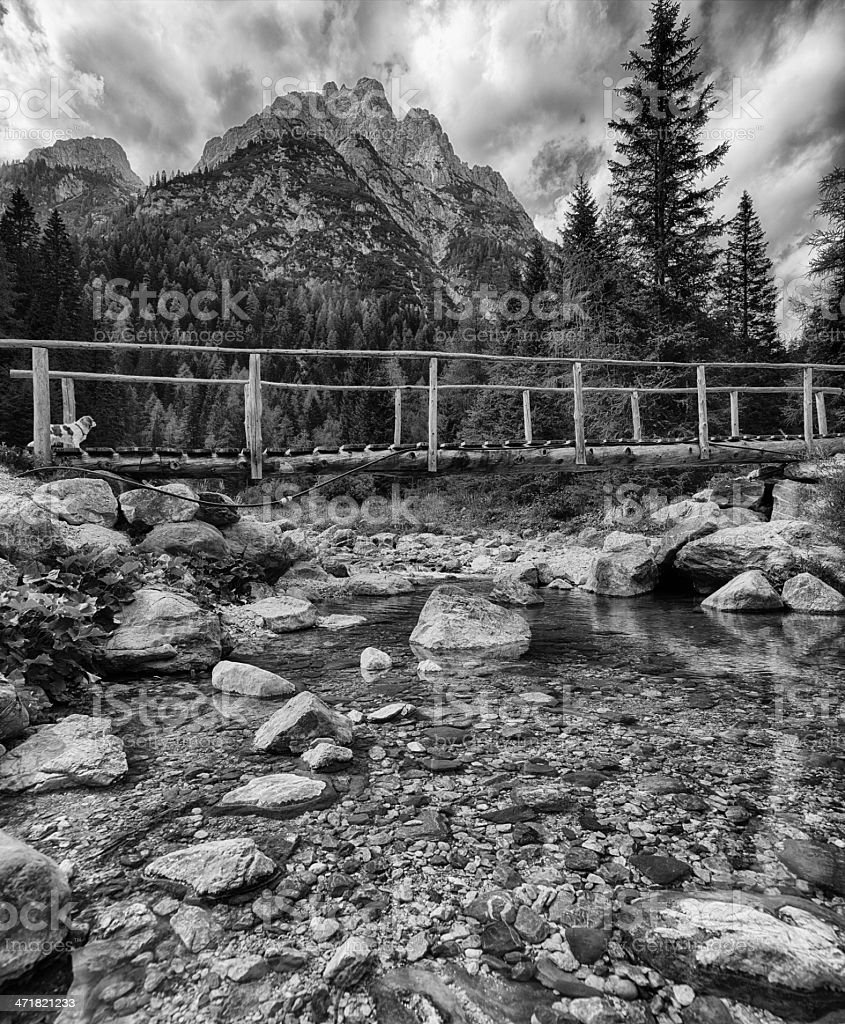 River. Black and White royalty-free stock photo