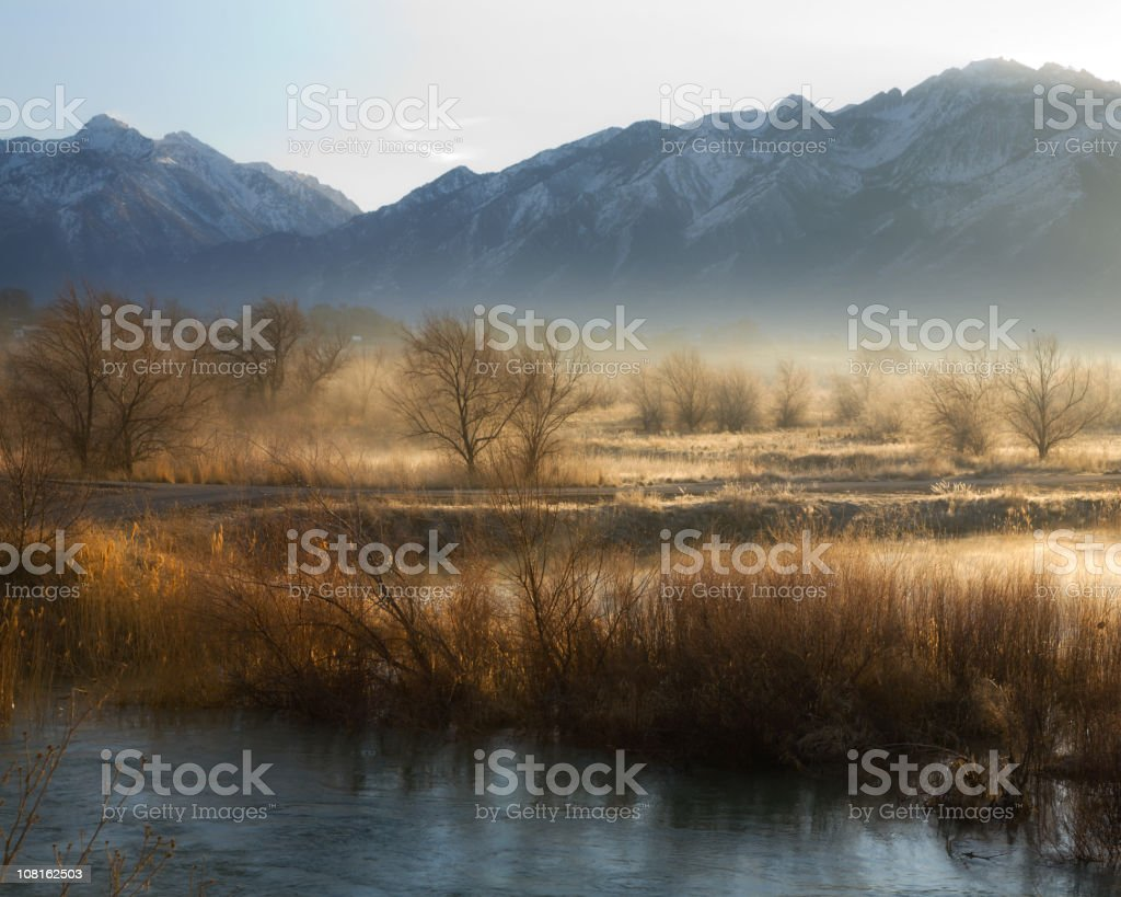 River Bottom in the Morning stock photo