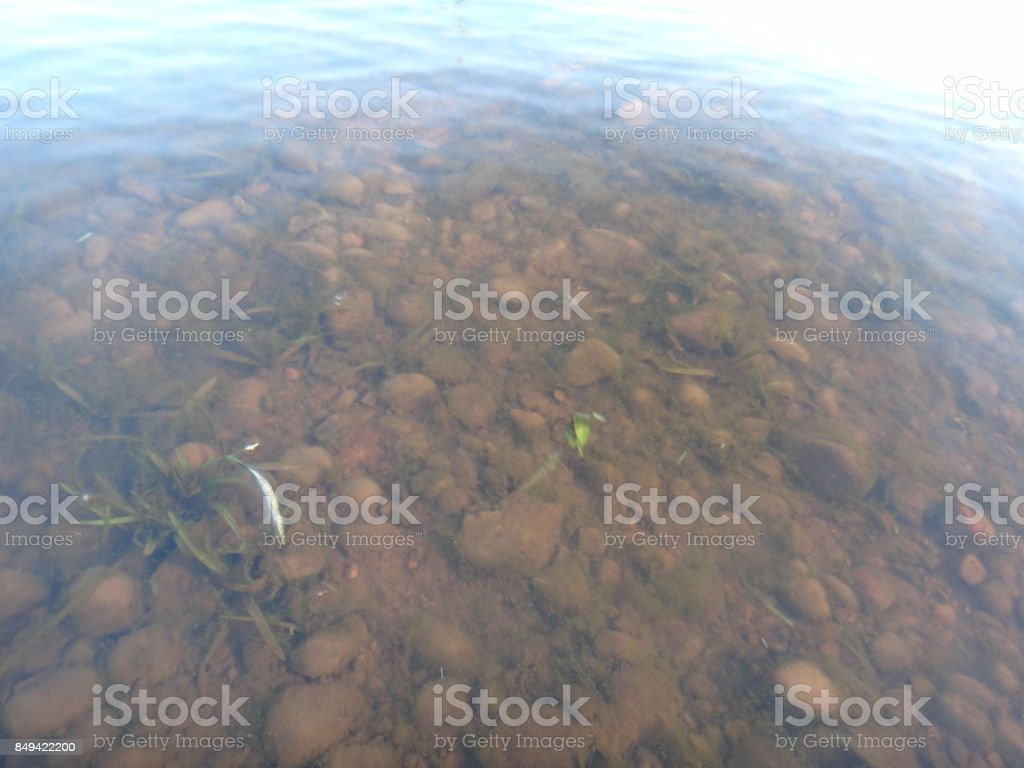 River bottom (River bottom on the bank) stock photo