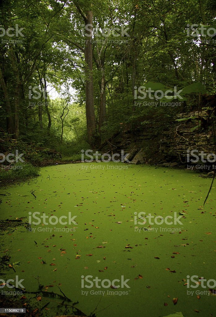 river bottom scenes royalty-free stock photo