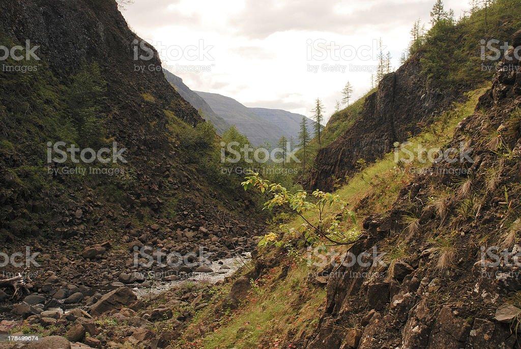 River Bucharama. royalty-free stock photo