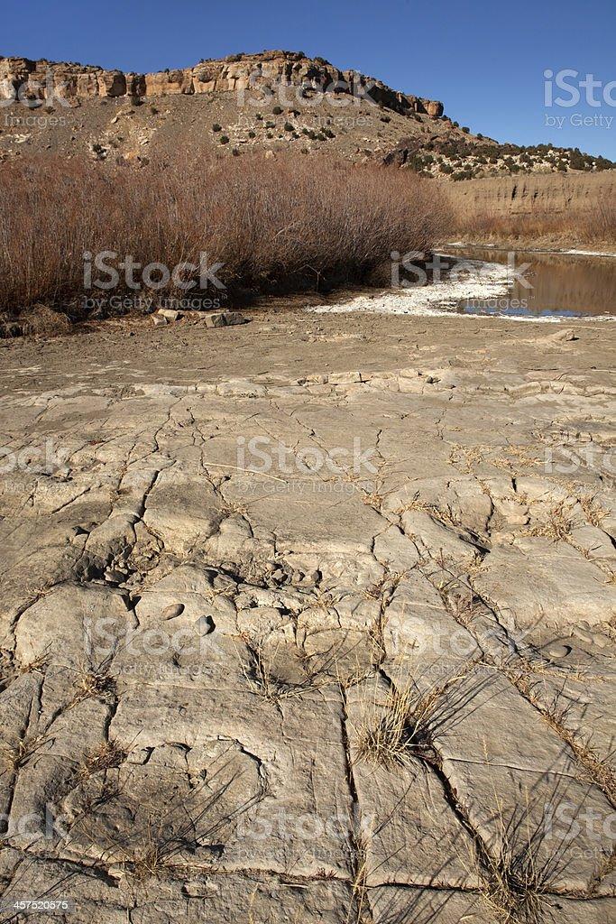 River channel Apatosaurus dinosaur footprints Colorado stock photo