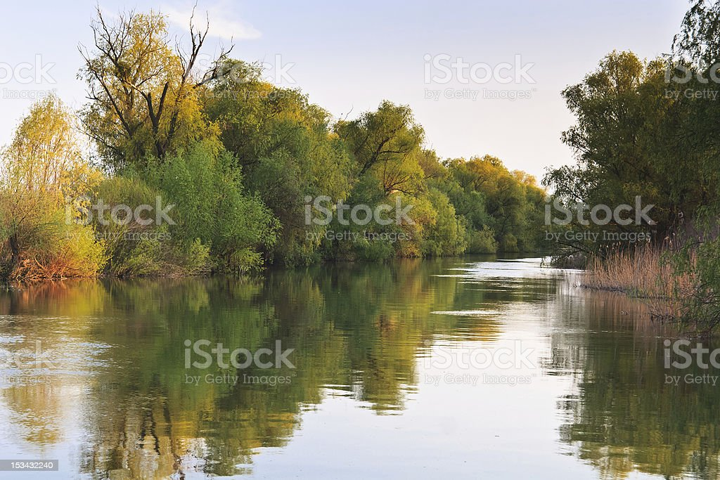 river channel in the Danube Delta royalty-free stock photo