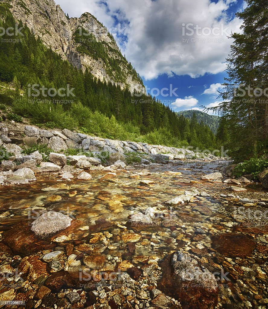 River. Color Image royalty-free stock photo
