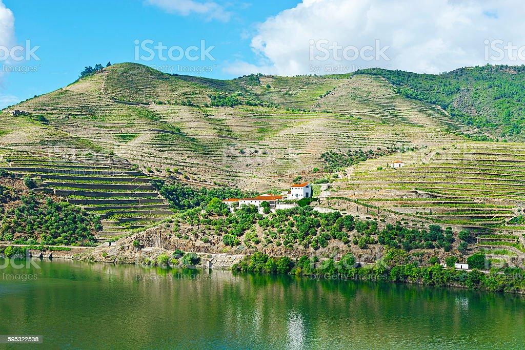 River Douro in Portugal stock photo