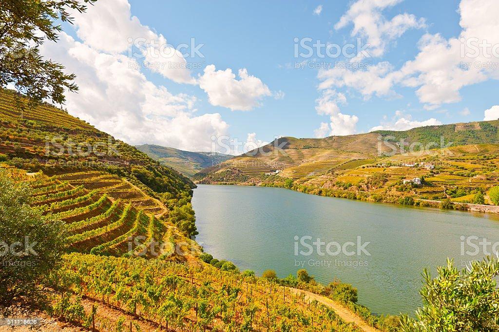 River Douro stock photo