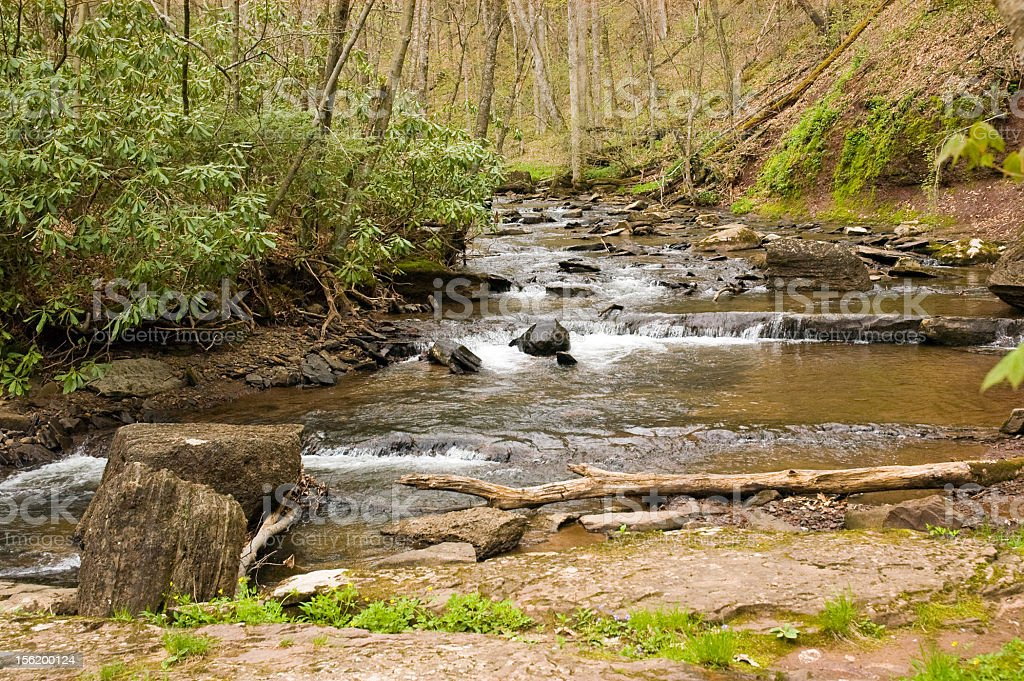 River Flowing Through the Countryside royalty-free stock photo