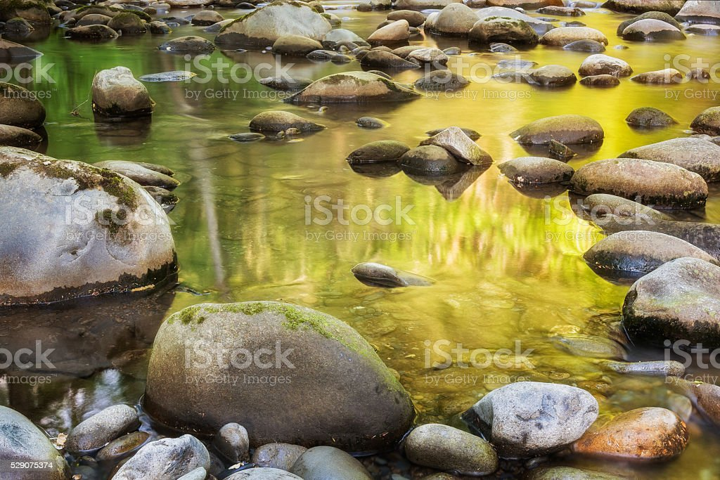 River Forest Reflection Great Smoky Mountains National Park Gatlinburg TN stock photo