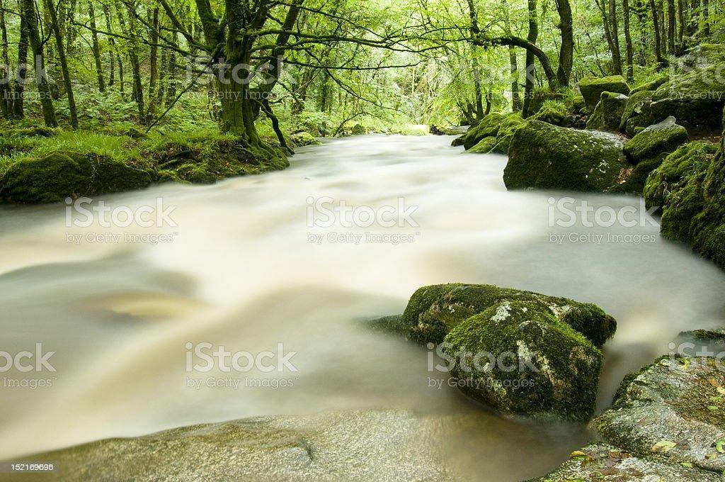 River Fowey, Cornwall stock photo