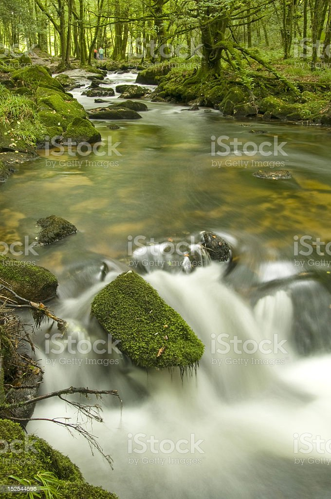 River Fowey, Cornwall royalty-free stock photo