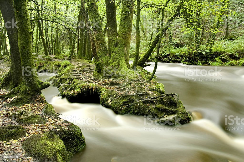 River Fowey stock photo