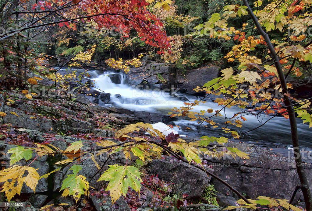 River framed by colorful autumn leaves stock photo