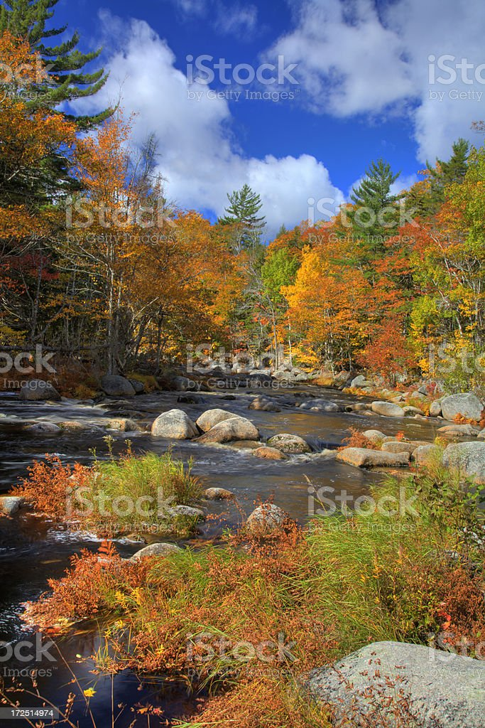 River in Autumn 1 royalty-free stock photo
