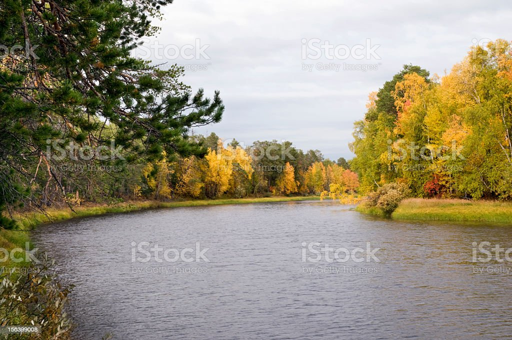River in autumn forest. royalty-free stock photo
