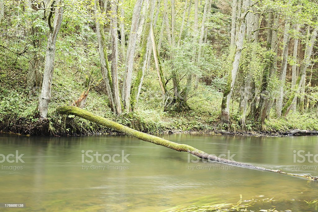 river in autumn royalty-free stock photo