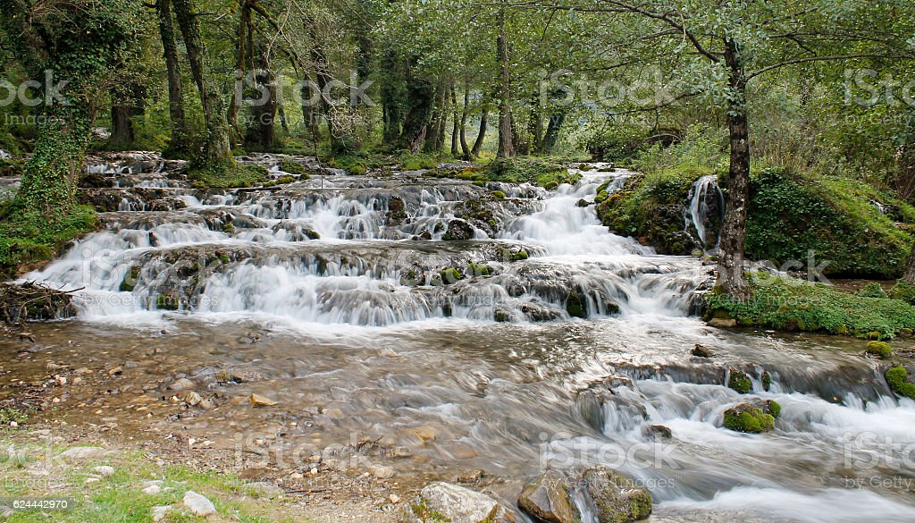 River in deep forest stock photo
