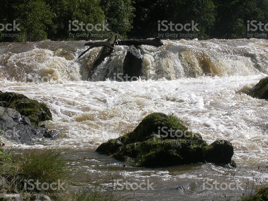 River in Flood 01 royalty-free stock photo