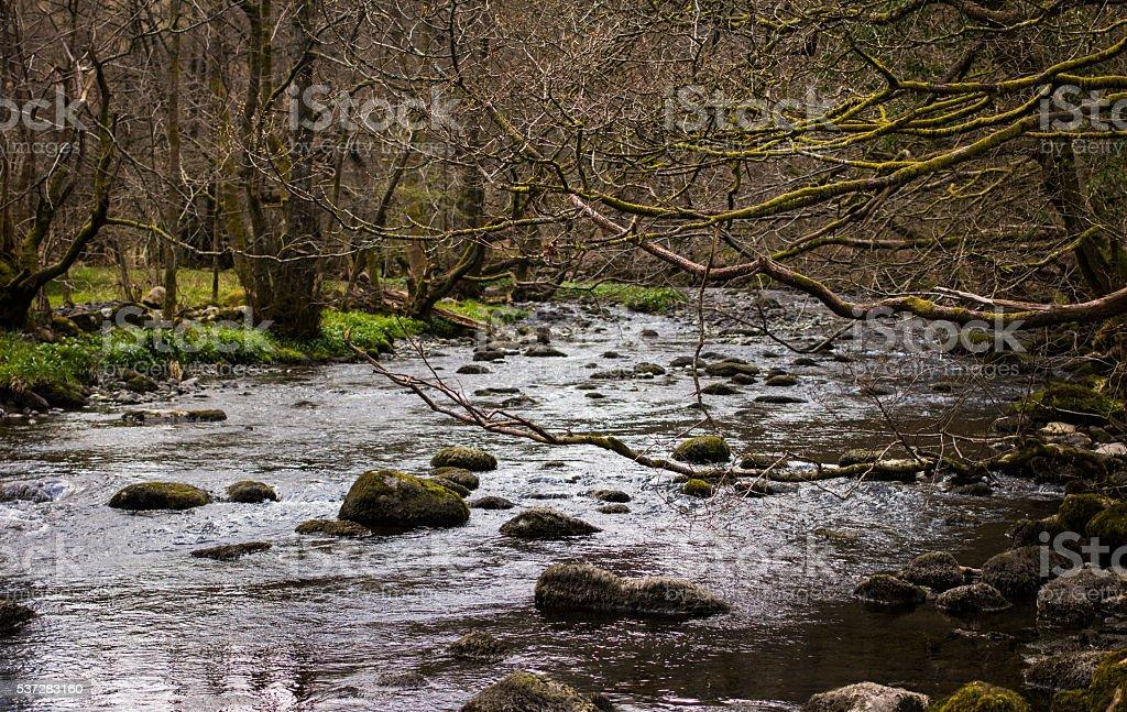 River in Grasmere stock photo