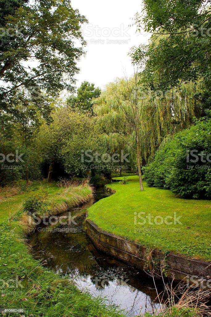 River in green stock photo