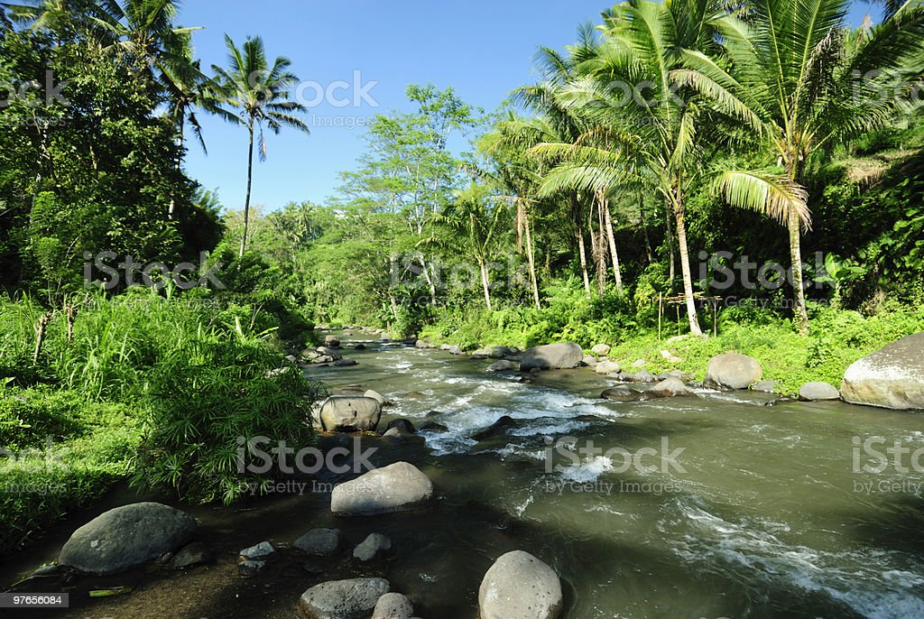 River in Indonesia royalty-free stock photo