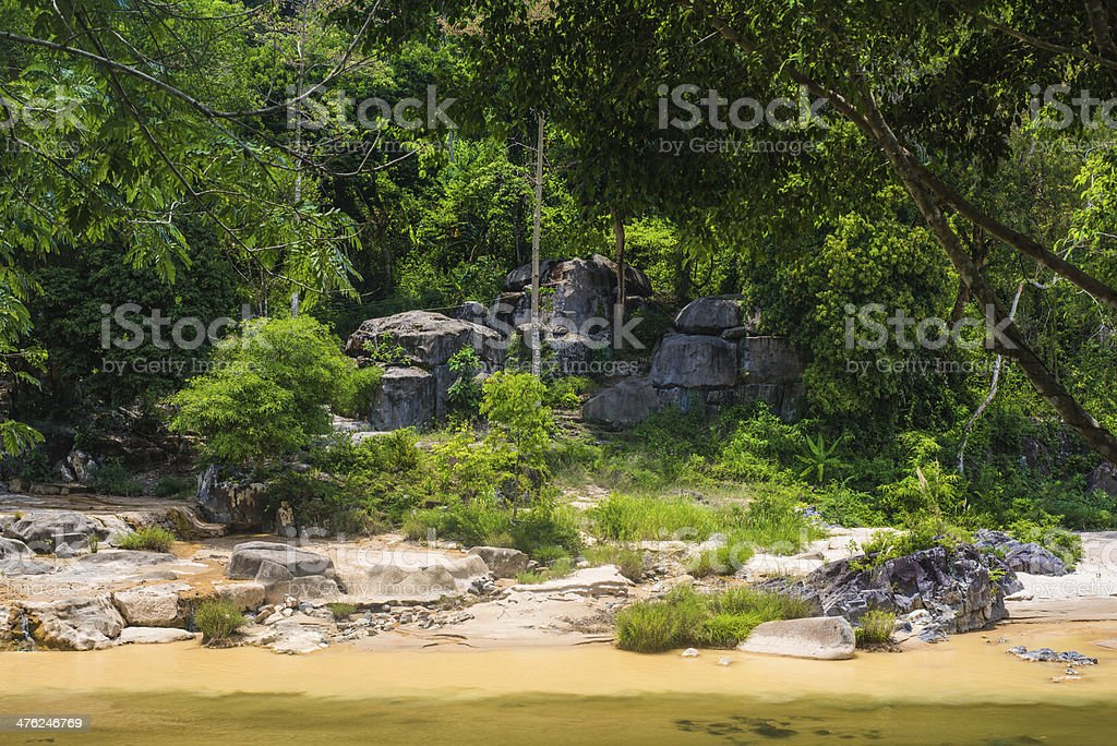 River in jungle royalty-free stock photo